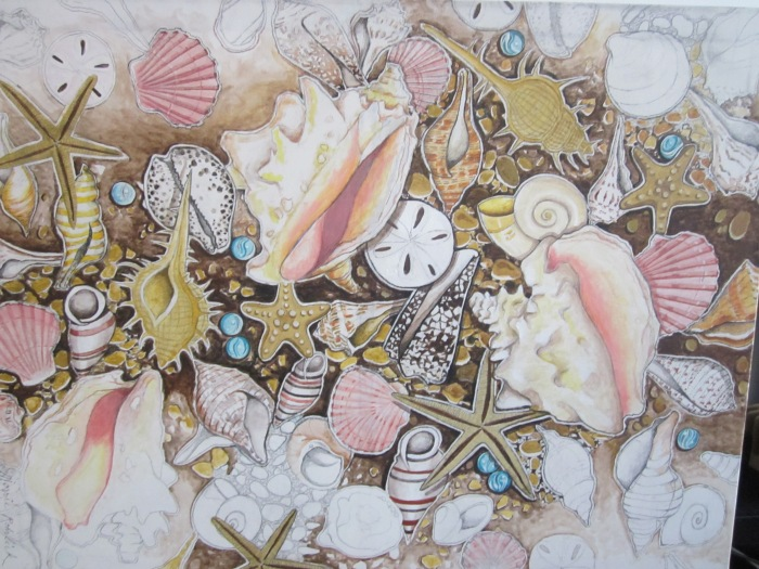 188 untitled (Seashells #1), 30- x 40-, acrylics and colored pencils on canvas (2)