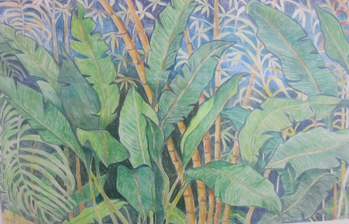 220 -Bamboo TreesBanana Leaves-, 24 14- x 17 14- (framed), colored pencils on paper